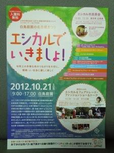 20121015-223459.jpg